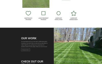 Absolute Lawn Pros